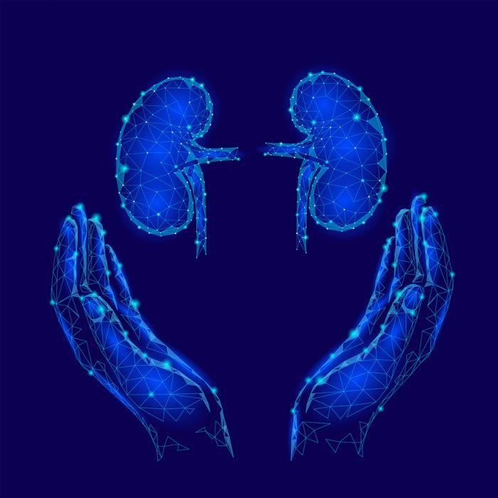 Kidney Awareness